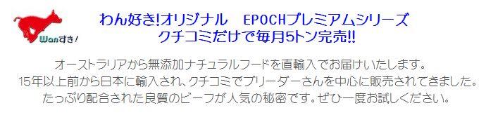 epoch_puremium_top
